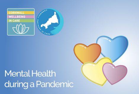 Mental Health in a Pandemic Seminar - Header Image